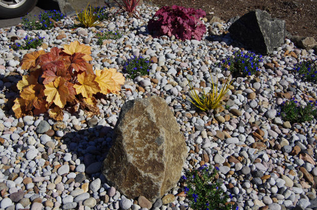 Landscaping Rocks Names : Alf img showing gt river rock at lowe s
